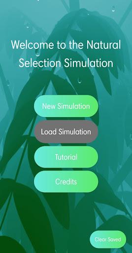 Natural Selection Simulation ss1