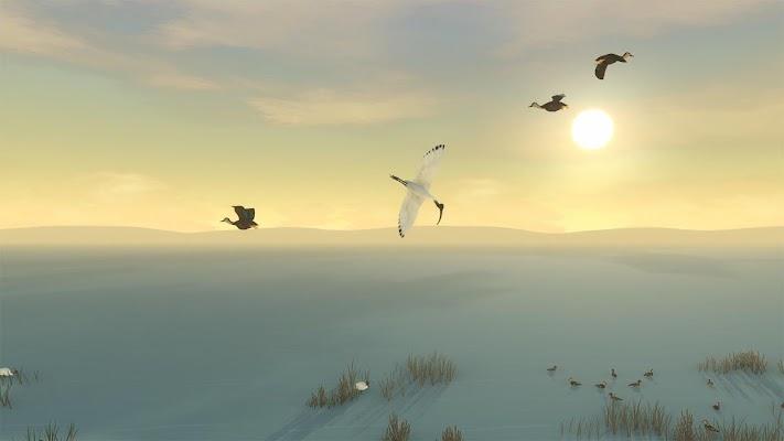 Storm Boy Screenshot Image