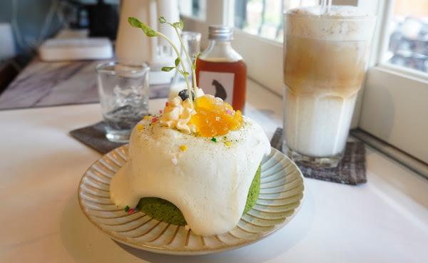 台南最萌店貓 療育系咖啡館 肥貓咖啡 戚風蛋糕上頭綴著珠寶般的芒果晶球