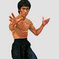 Martial Arts - Skill in Techniques APK