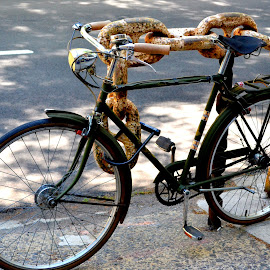 by Alexandra Tsalikis - Transportation Bicycles ( bicycles )