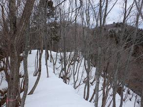 前方に臼本山(左)