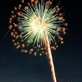 Boom! by Avishek Bhattacharya - Public Holidays July 4th