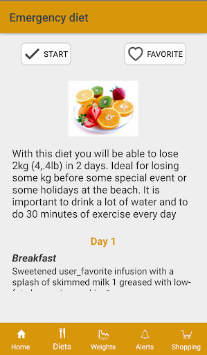 Diets for losing weight screenshot 3