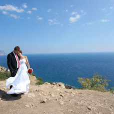 Wedding photographer Elena Lavrenteva (Elenlav). Photo of 20.01.2014
