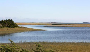 Photo: This is the view you can enjoy from the Carrot Island Boardwalk. There you can view tidal creeks, spartina marsh, North River Channel, Middle Marshes and Shackelford Banks. The boardwalk can be reached by boat. It is directly across from the boat access on the east end of Front Street. Also an excellent place for birding and learning through interpretive signs.