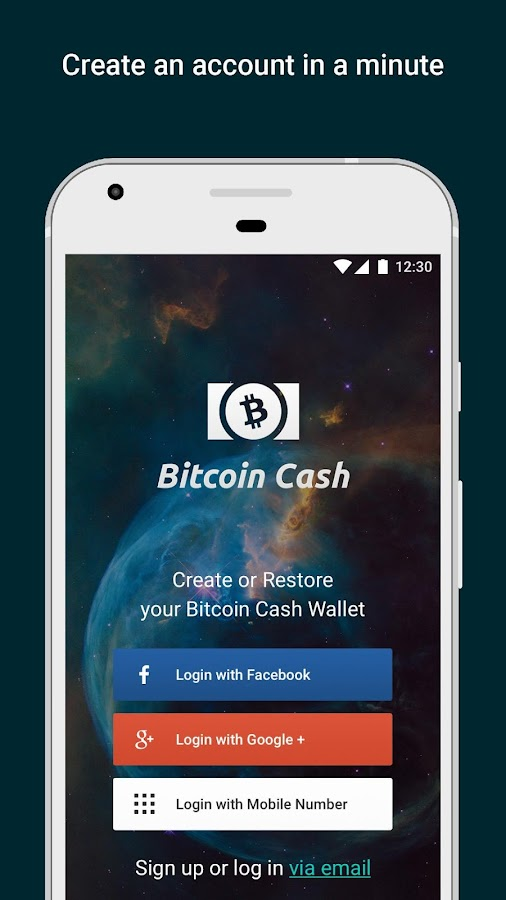 Bitcoin Cash Wallet by Freewallet- screenshot