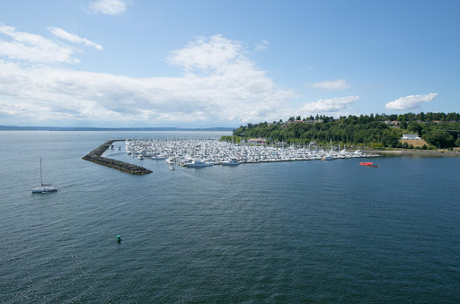 A pretty marina in Seattle's Elliott Bay.