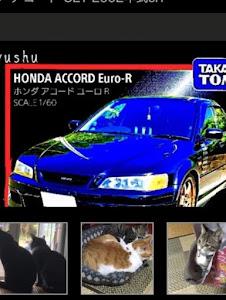 アコード CL1 2002年式cl1   ユーロRのカスタム事例画像 テルちゃん☆マン【CT愛猫部13番】さんの2018年11月15日22:20の投稿