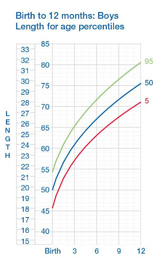 download growth chart first year google play softwares