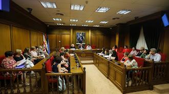 Último pleno del Consejo de Mujeres celebrado este miércoles.