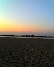 Photo: The beach on Plum Island (#1)