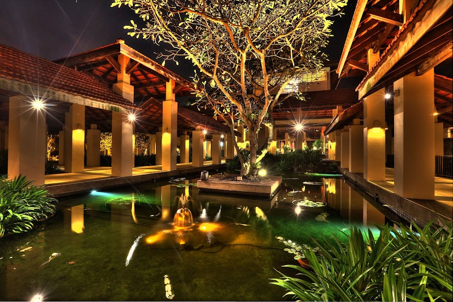 Pond in The Sentosa Resort, Singapore by Steven Yeoh - Buildings & Architecture Other Exteriors