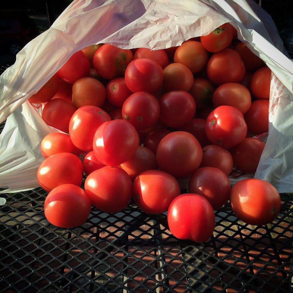 Plentiful harvests await you!