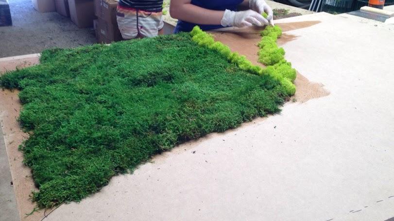 Jardines de planta conservada