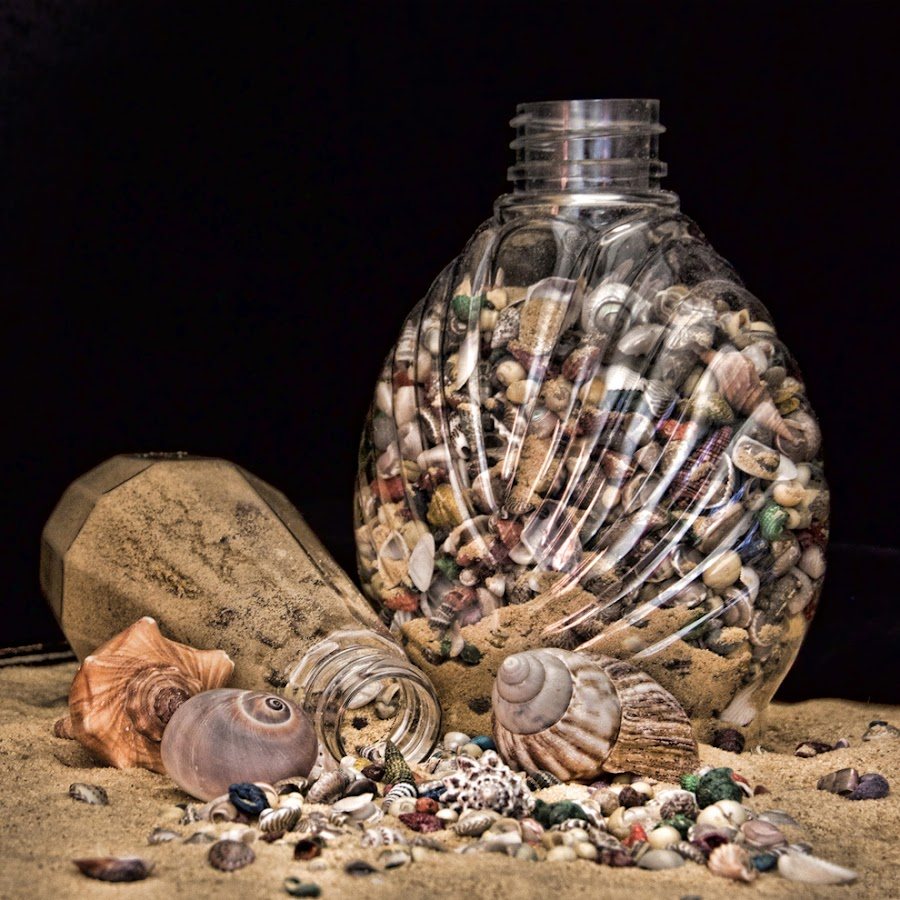 Seashell Bottles by Veronica Beaudry - Artistic Objects Still Life (  )