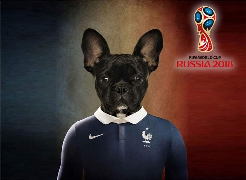 Mundial perrete