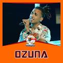 OZUNA  DE MUSICA SIN INTERNET 2020 icon