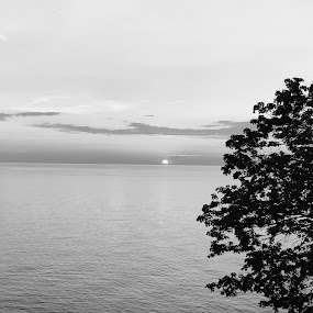 by Theo Staszko - Black & White Landscapes