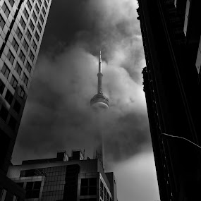 Downtown Toronto Fogfest No 1 by Brian Carson - Uncategorized All Uncategorized ( photograph, brian carson, exterior, toronto, street, minimal, travel, architecture, cityscape, city, sky, weather, the learning curve photography, perspective, surreal, light, structure, canada, texture, experimental, sunlight, landmark, environment, window, facade, outdoors, canadian, scene, lines, view, www.thelearningcurve.ca, wall, outside, haze, calm, famous, concept, monochrome, black and white, landscape, geometric, photography, modern, skyscraper, financial district, glass, cn tower, above, cloudy, district, misty, downtown, abstract, clouds, icon, building, black & white, ontario, morning, photo, urban, tower, foggy, pattern, fog, background, foto, high )