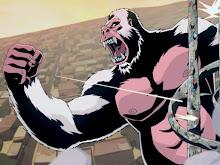 Honky Kong or White Apes Can't Hump thumbnail