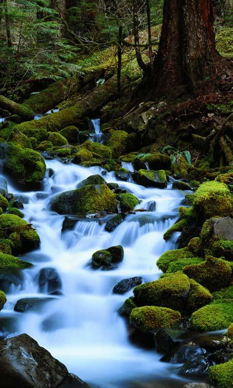 moving water live wallpaper android apps on google play