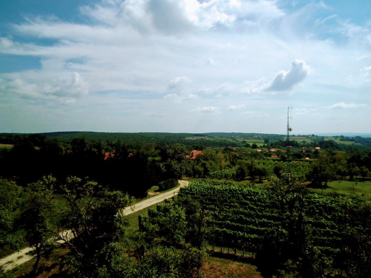 Bogojina (Bagonya)//Vršič - helyi URH-FM adóállomás