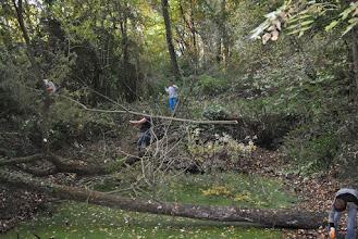 Photo: 25.10.2015. Les branches coupées doivent être enlevées pour ne pas retomber dans l'eau.
