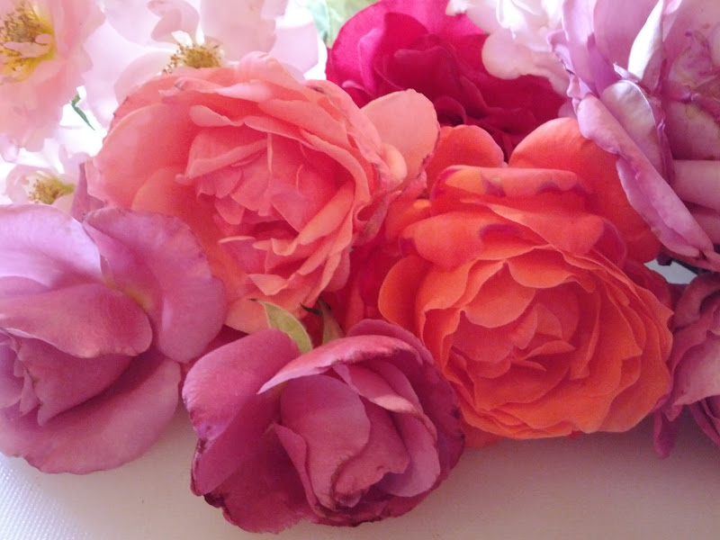 Photo: Sharing Roses from My Garden and wishing you all a Very Happy May Day!  http://wendyshat.blogspot.com/2012/05/may-day-tradition-garden.html