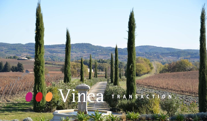 Vignoble Bouches-du-Rhône