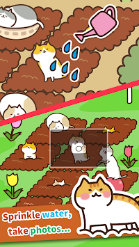 Nekohatake - unwind field in cat training - apk screenshot