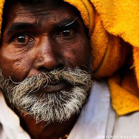 Old is Gold by Prithiviraj Kiridarane - People Portraits of Men ( india, senior citizen, men, rajasthani, portrait, colours )