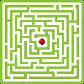 Maze King download