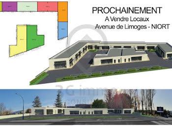 locaux professionels à Niort (79)