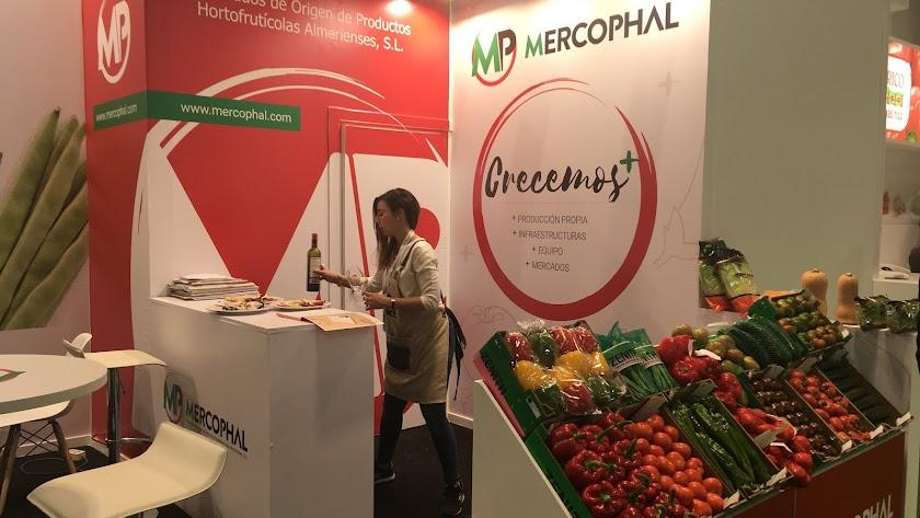 Mercophal muestra sus productos comerciales.