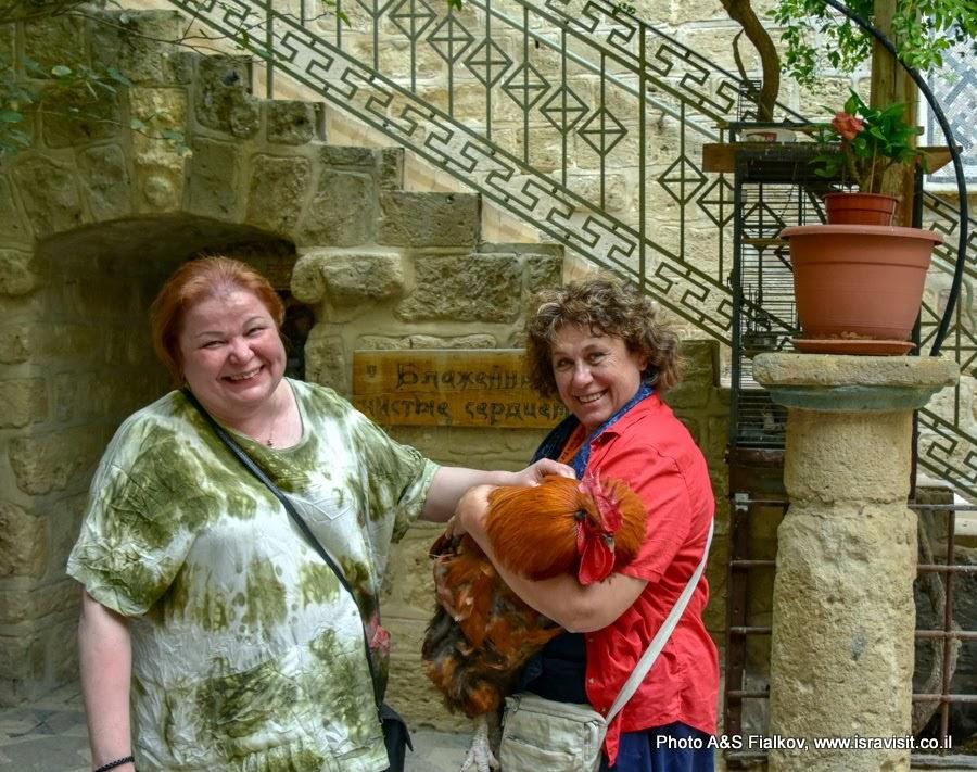 Индивидуальная экскурсия в Монастырь Герасимуса Иорданского. Гид в Израиле Светлана Фиалкова.