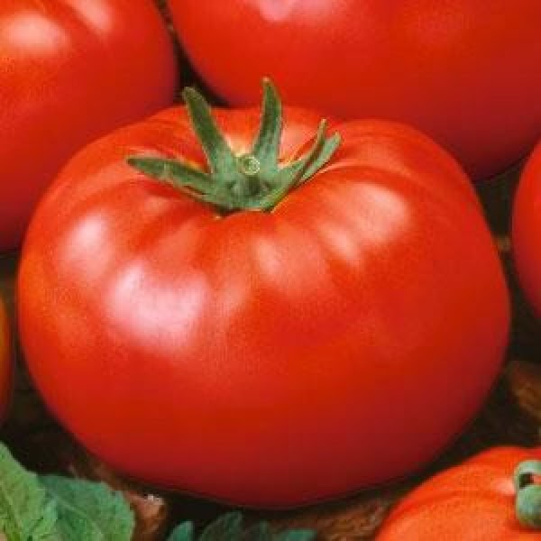 Slice Tomatoes into thick slices