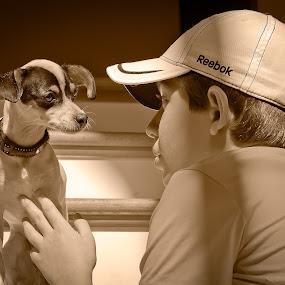 Speak to Me by Lorella Johnson - Animals - Dogs Portraits ( stairs, dog )