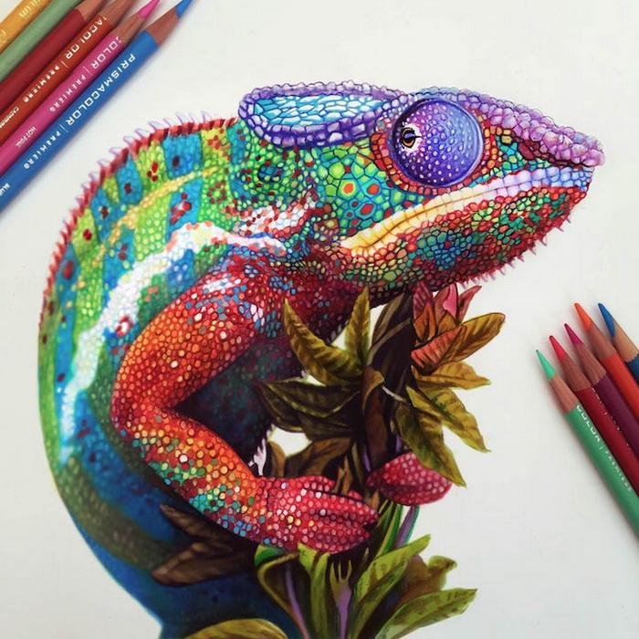 Por Amor Al Arte Lápices De Colores Mágicos Dibujos De Morgan