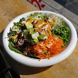 delicious vegan meals at Urban Herbivore in Toronto in Toronto, Ontario, Canada