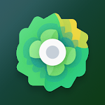 Moxy Icons 5.2 (Patched)