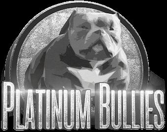 PLATINUM BULLIES - HOME