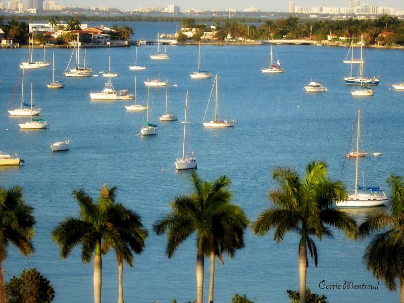 Photo: Miami