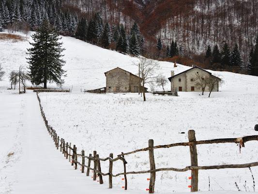 Val Preone di Moretti Riccardo