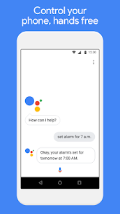 Google Assistant Go 4