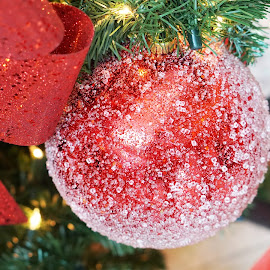 Red Icy Christmas Bubble by Alice Chia - Public Holidays Christmas ( crystals, bubble, icy, red, ribbon, white )