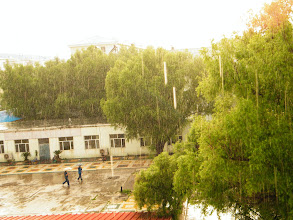 Photo: most summer rains in decades in Qiqihar witness global warming: a sunrain in QRRS Dorm, where benzrad 朱子卓 preparing his Royal China. averagely rained every summer heat in the season, being most appealing weather recently.