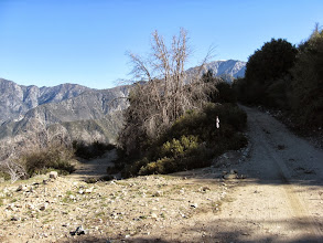 Photo: Elev. 5140' - View north on the west flank of Sunset Peak, junction with the road coming up from Cow Canyon Saddle (left)
