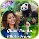 Giant Panda Photo Frame / Panda Photo Editor Download on Windows
