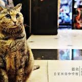 貓妝咖啡 Mask Cafe